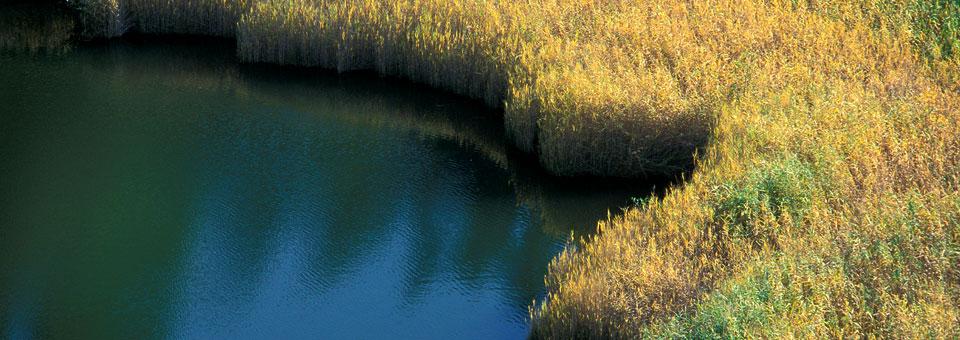 riserve naturali lago villa