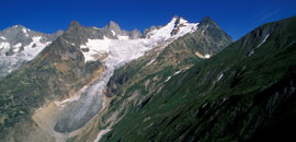 Glacial environments of the Mont Blanc