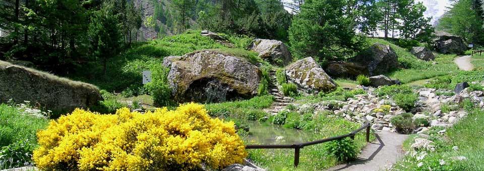 giardino paradisia valle d aosta