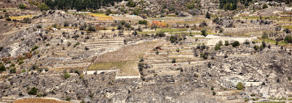 sarre valle d aosta