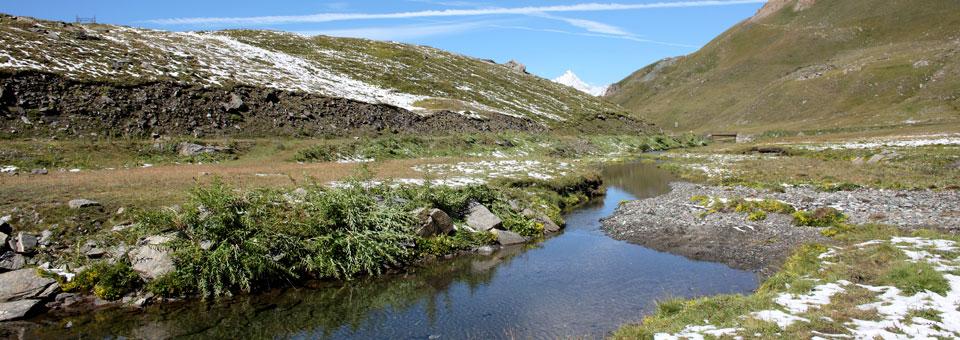 urtier gran paradiso valle aosta
