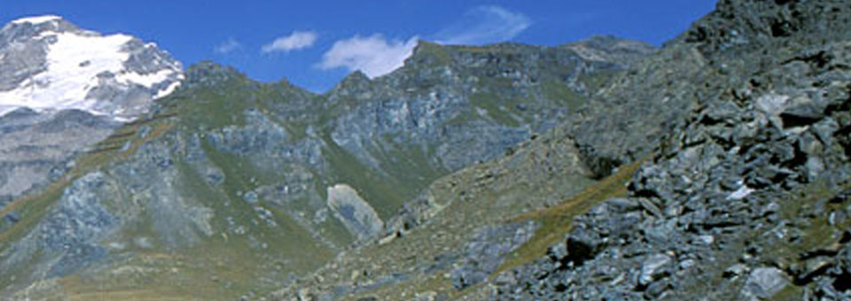 valle d aosta ayas