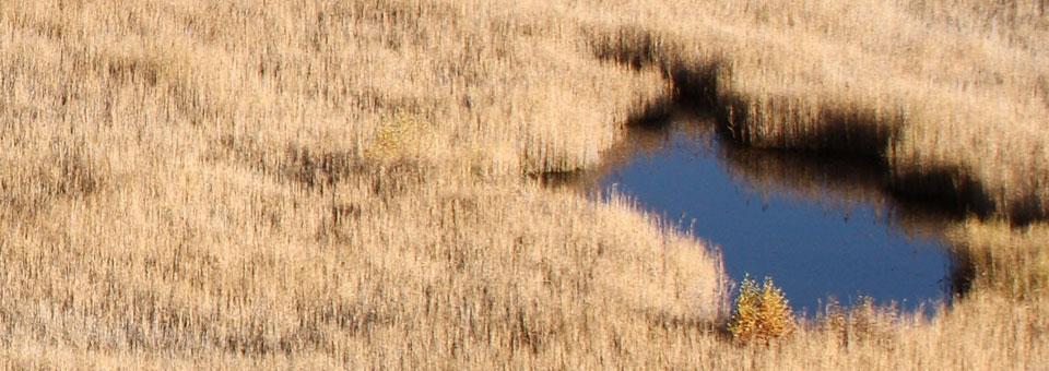 lago di loson valle d aosta